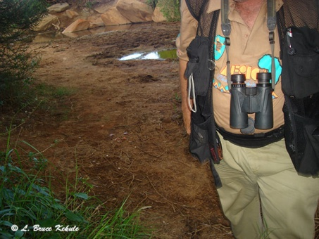 Cam trapper LBK in Kenya, Africa 2012