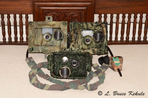 W7s and S600 camera traps to Africa