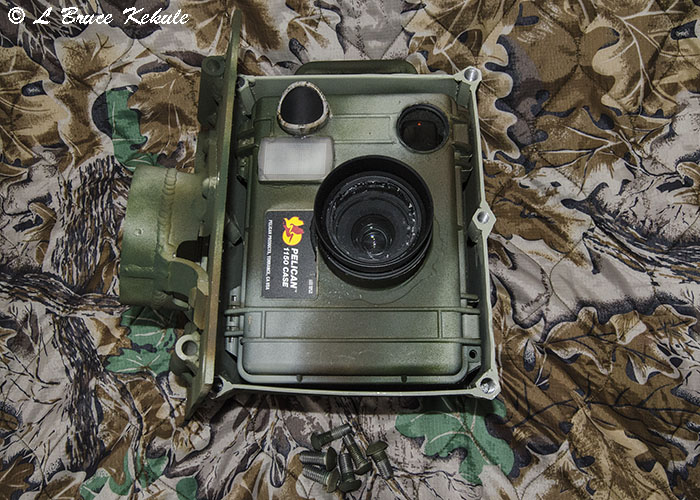 D300s trail cam in 'elephant proof' box