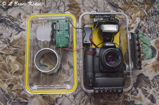 Nikon D90 trail cam in a PLano box