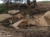 Stream in Tsavo (West) National Park, Africa, Kenya 2012