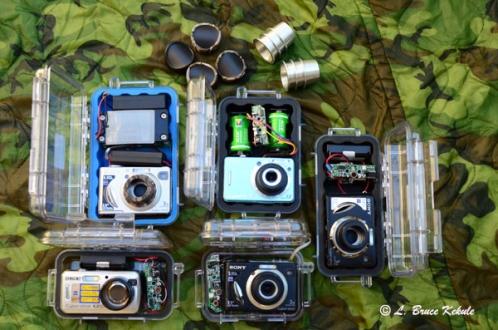 LBK 'Clear-view' camera trap project