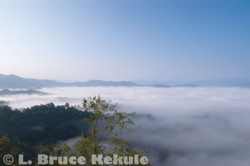 'Sea of Fog' over the Phetchaburi watershed in Kaeng Krachan