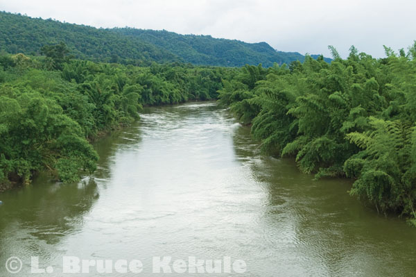 Khwae Noi in Sai Yok National Park