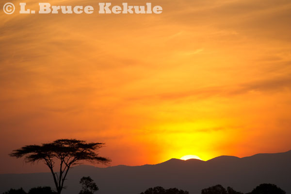 Sunrise at Sweetwaters Game Reserve, Kenya, Africa