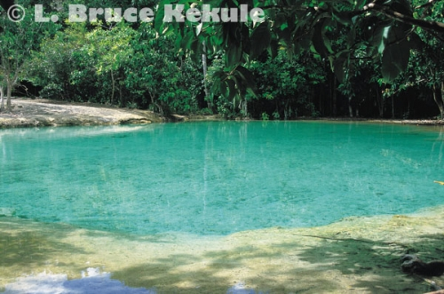 Emerald pond in Khao Nor Chuchi