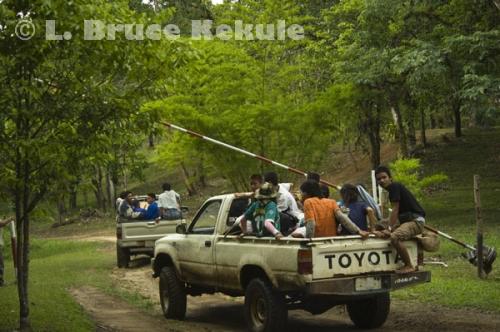Taxis in Thung Yai