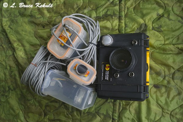 Canon 600D trail cam-sensor and flashes