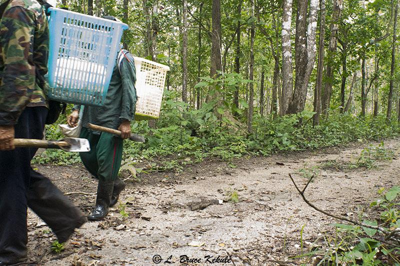 Poacher in Huai Kha Khaeng
