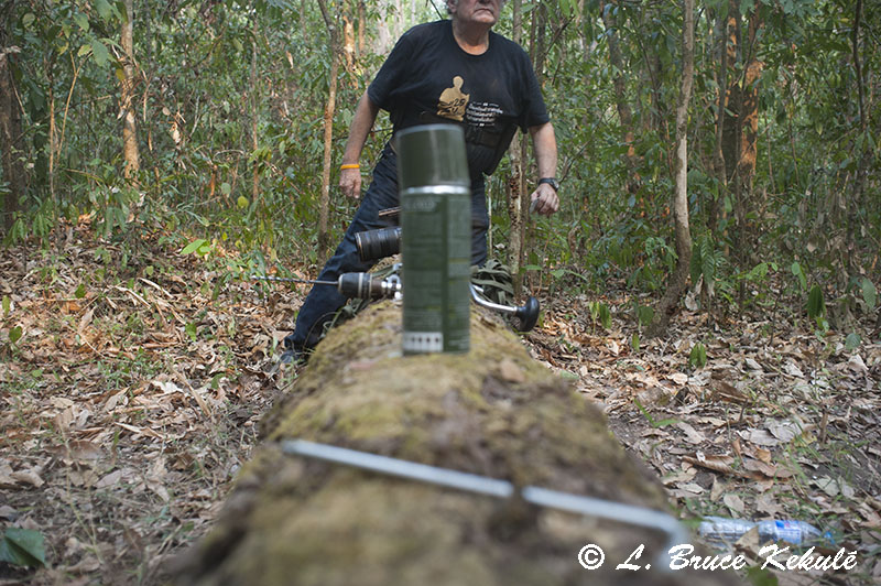 me crossing the new tiger log in Huai Kha Khaeng W.S., western Thailand