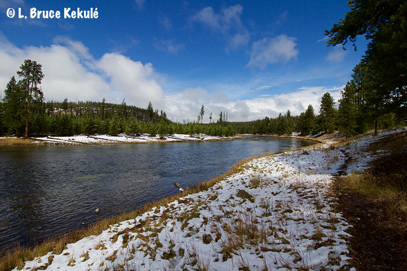 freshly-laid-snow-in-yellowstone-web