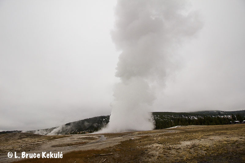 old-faithful-blowing-web