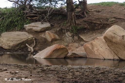 Stream in Tsavo (West) National Park, Africa, Kenya 2012