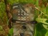 Egbertdavis DXG 125/LBK elephant proof box in the field
