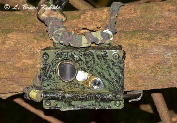 LBK camera trap