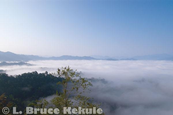 'Sea of Fog' over the Phetchaburi watershed in Kaeng Krachan