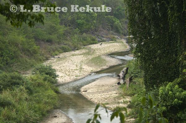 Huai Kha Khaeng