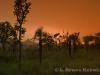 Sunset over Thung Yai Naresuan Wildlife Sanctuary